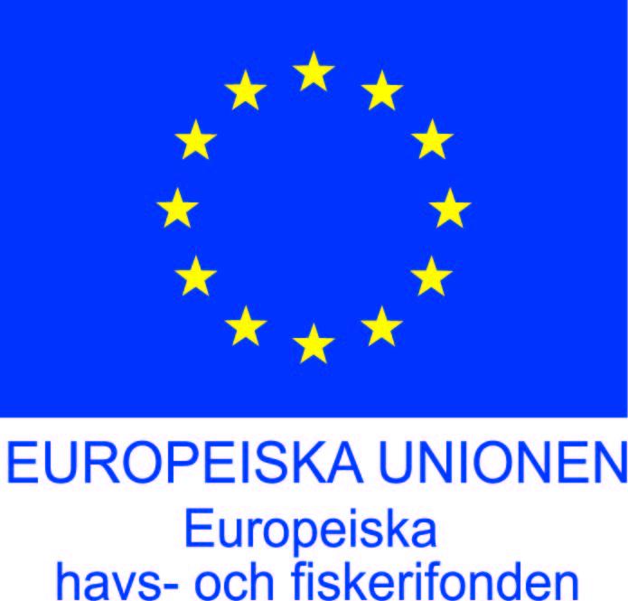 EHFF_flag