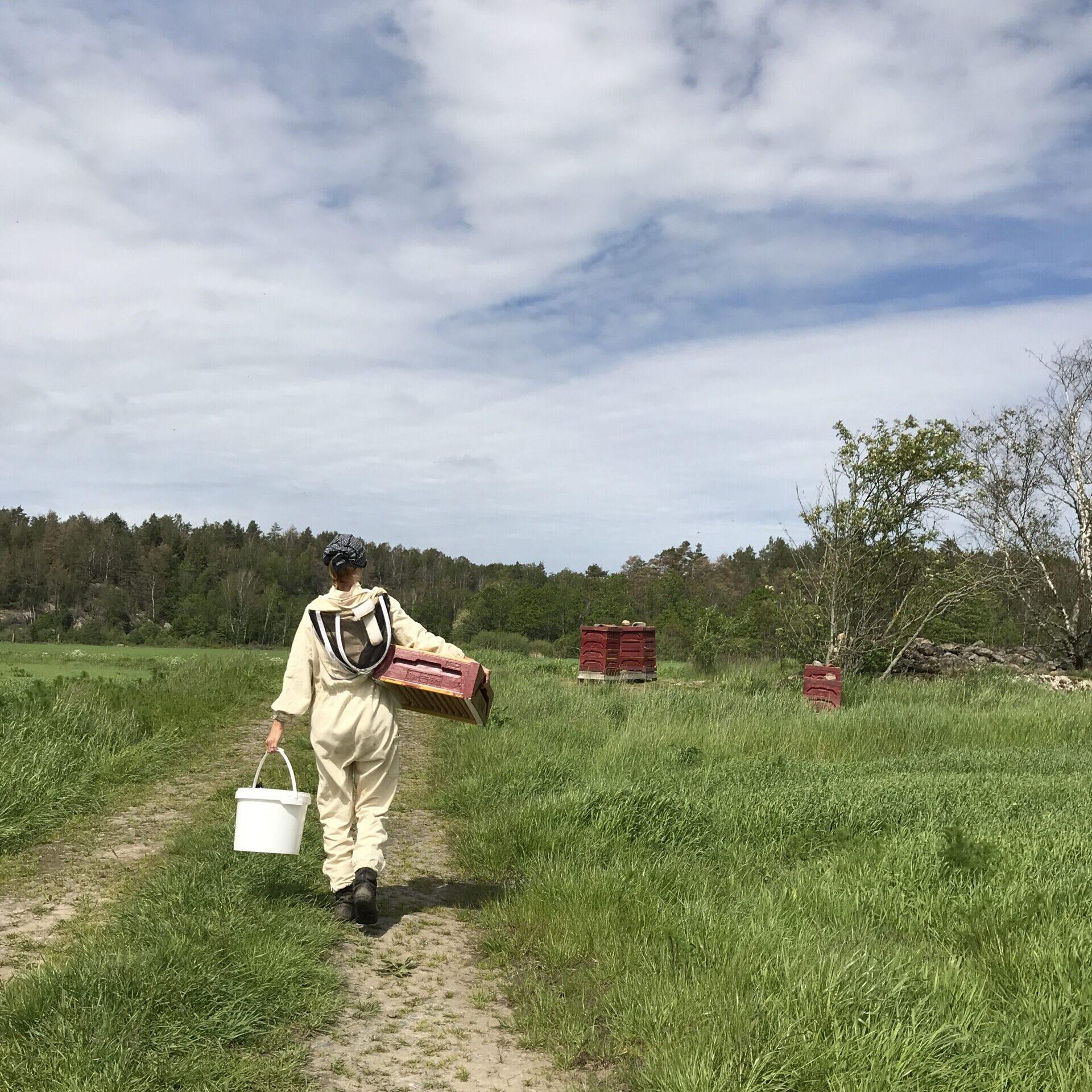 Djäknegårdens honung och bin