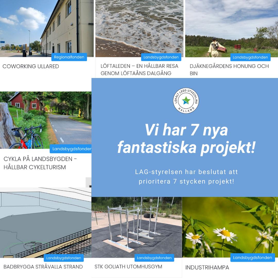 Kopia av Lokalt ledd utveckling halland (5)