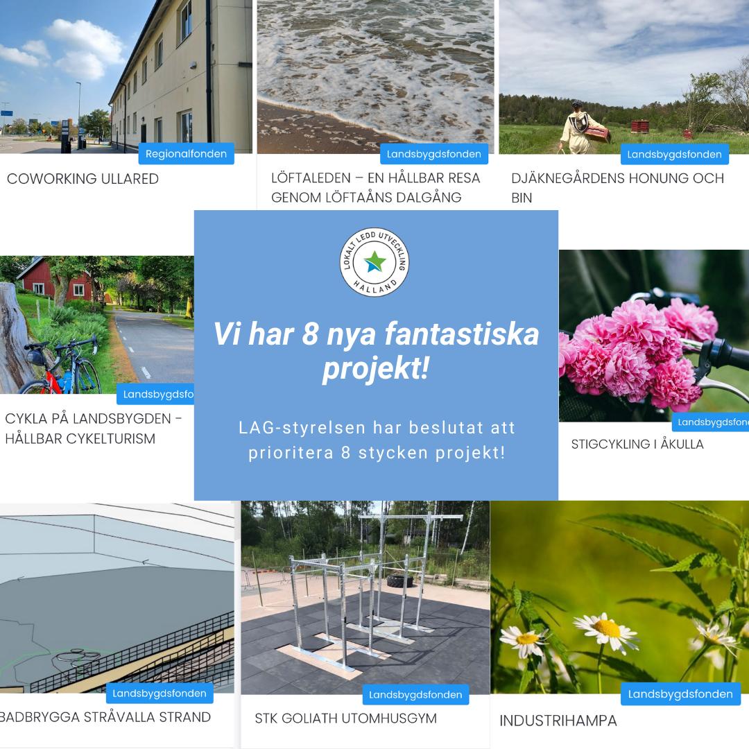 Lokalt Ledd Utvecklings 8 nya projekt